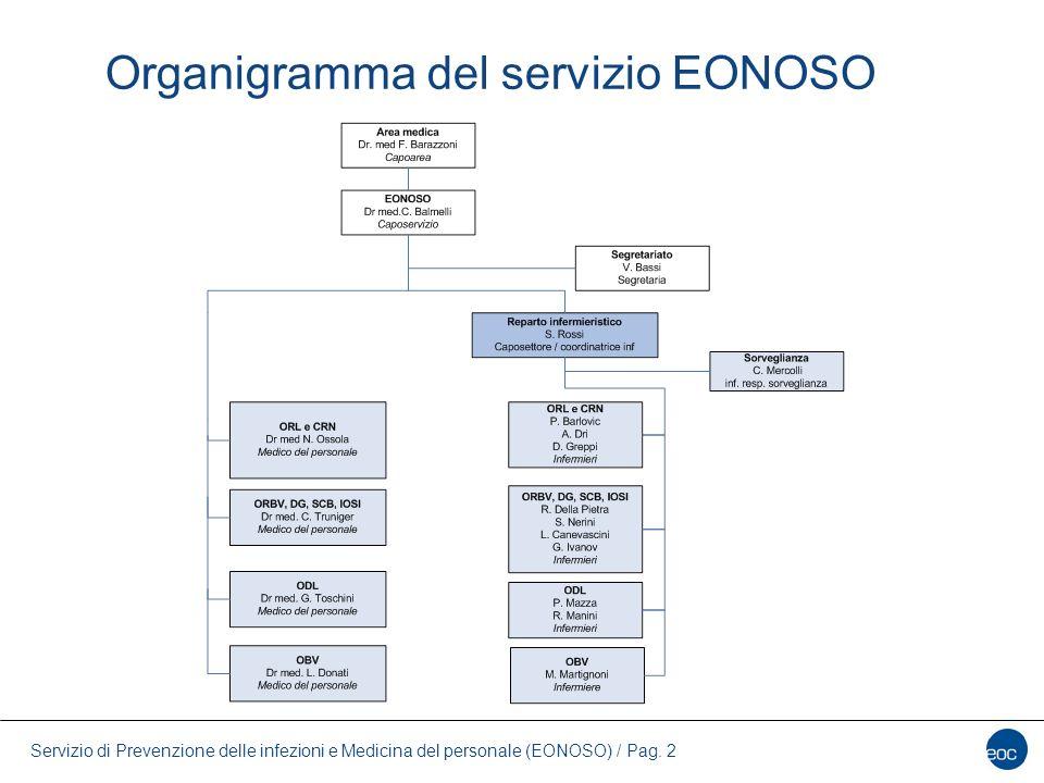 Organigramma del servizio EONOSO