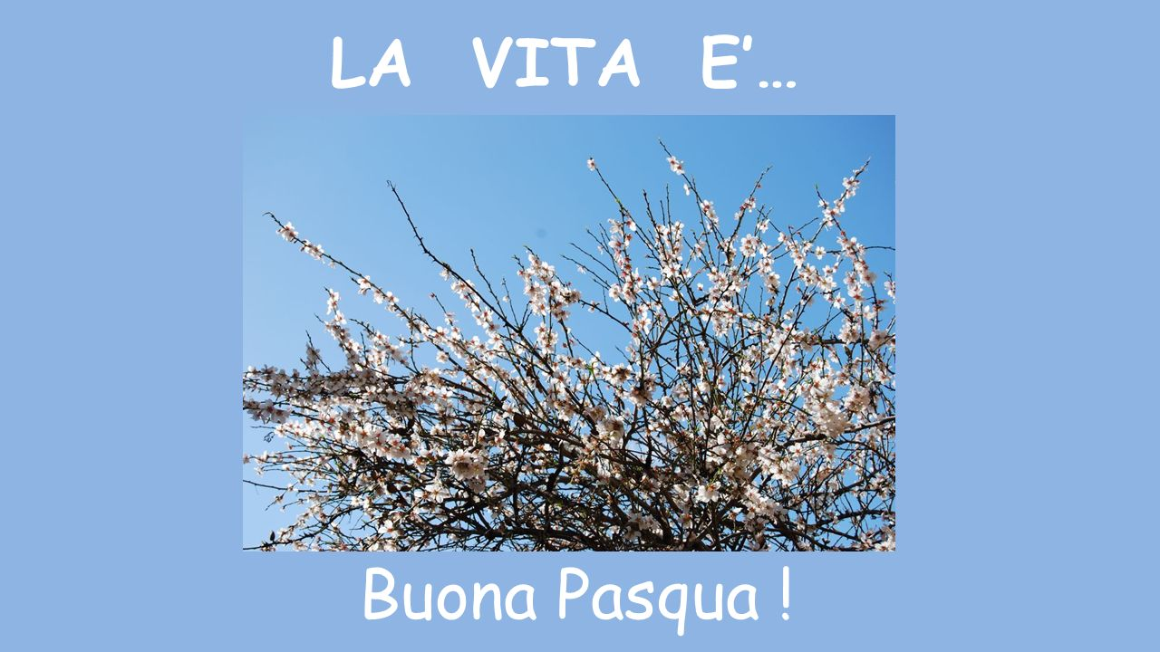 LA VITA E'… Buona Pasqua !