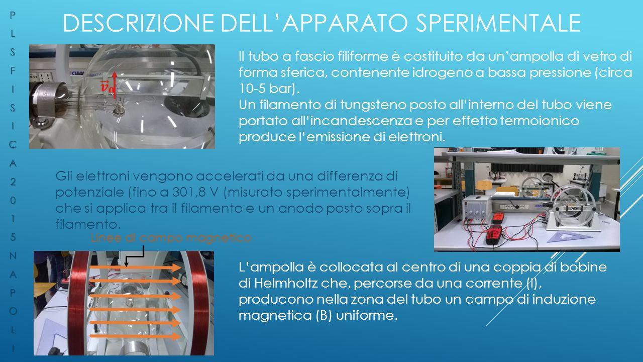 Descrizione dell'apparato sperimentale