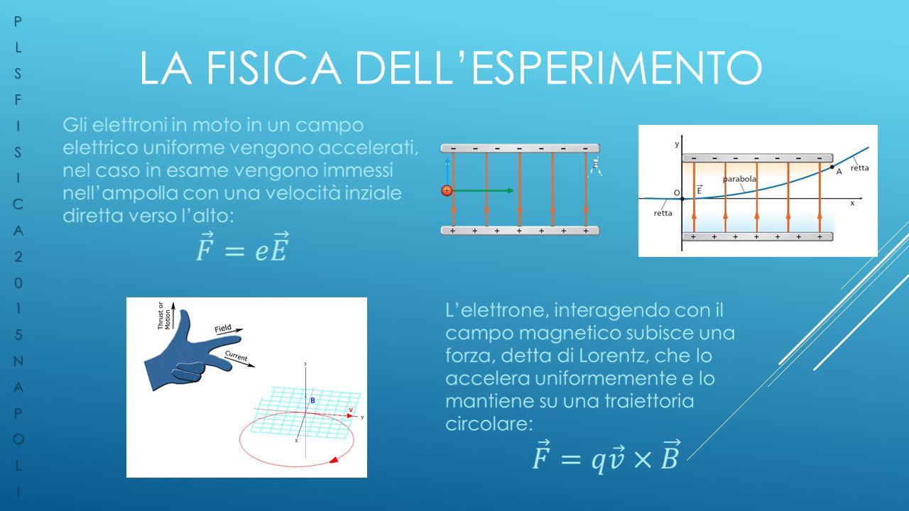 La Fisica dell'esperimento