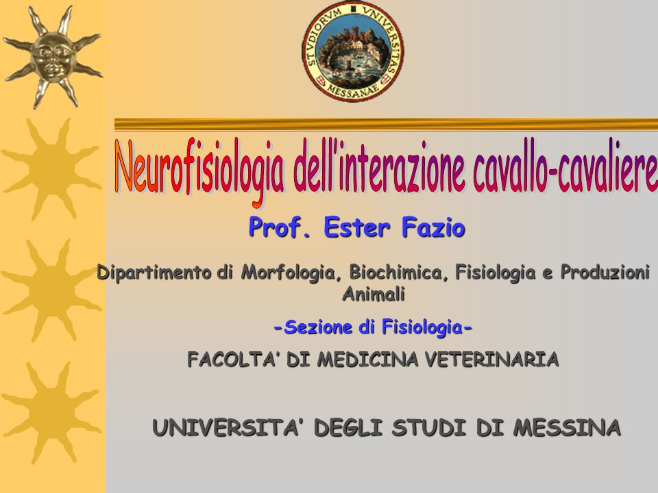 Neurofisiologia dell'interazione cavallo-cavaliere