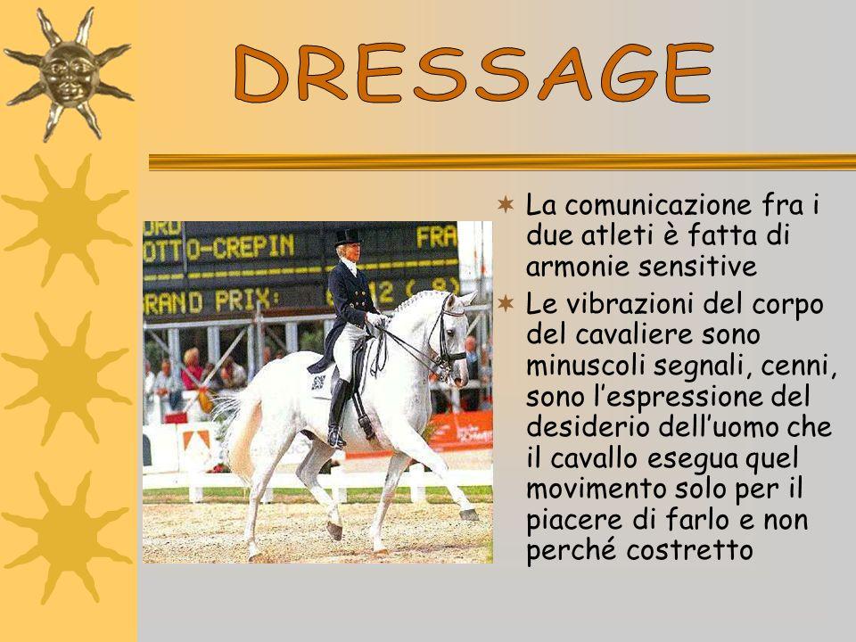 DRESSAGE La comunicazione fra i due atleti è fatta di armonie sensitive.