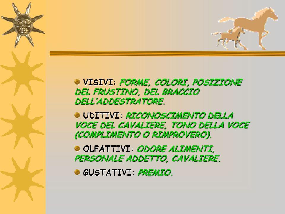 VISIVI: FORME, COLORI, POSIZIONE DEL FRUSTINO, DEL BRACCIO DELL'ADDESTRATORE.