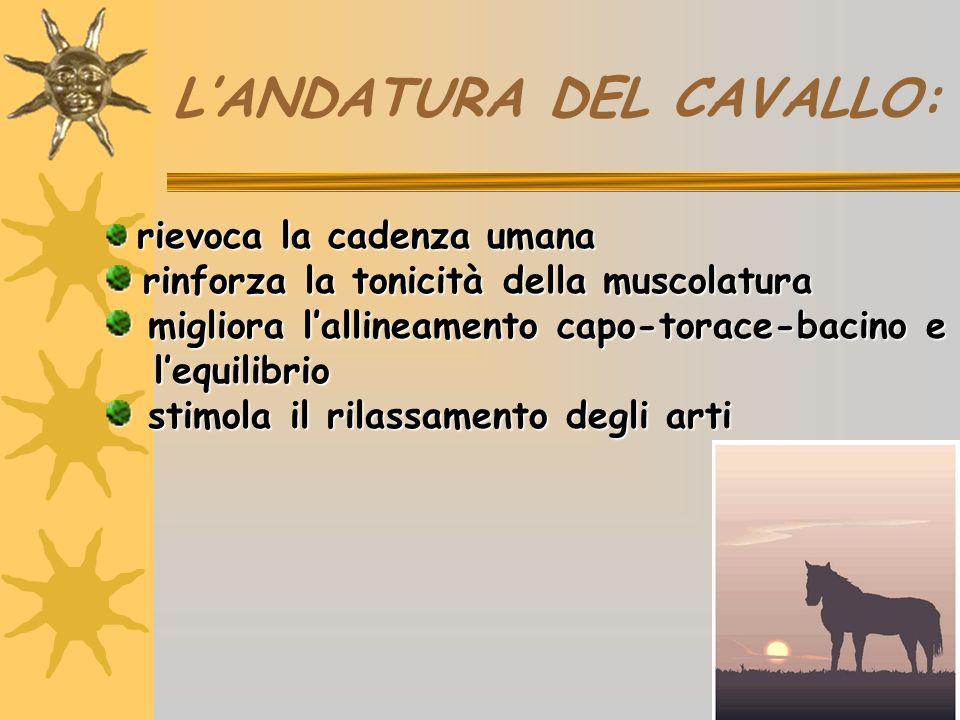 L'ANDATURA DEL CAVALLO: