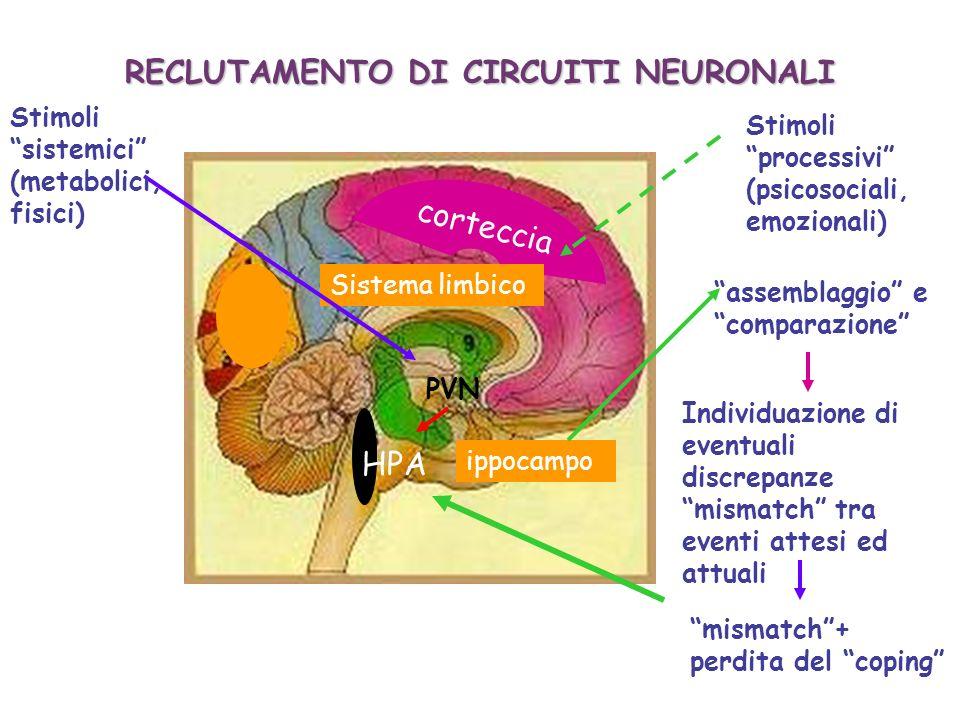 RECLUTAMENTO DI CIRCUITI NEURONALI
