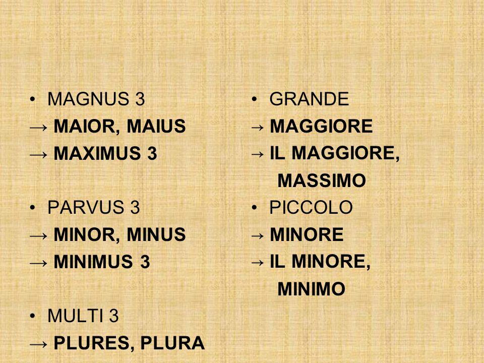 MAGNUS 3 → MAIOR, MAIUS. → MAXIMUS 3. PARVUS 3. → MINOR, MINUS. → MINIMUS 3. MULTI 3. → PLURES, PLURA.