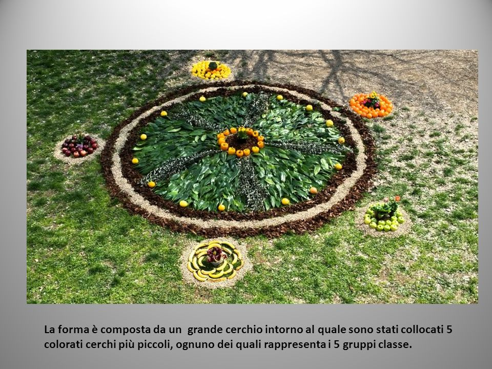La forma è composta da un grande cerchio intorno al quale sono stati collocati 5 colorati cerchi più piccoli, ognuno dei quali rappresenta i 5 gruppi classe.