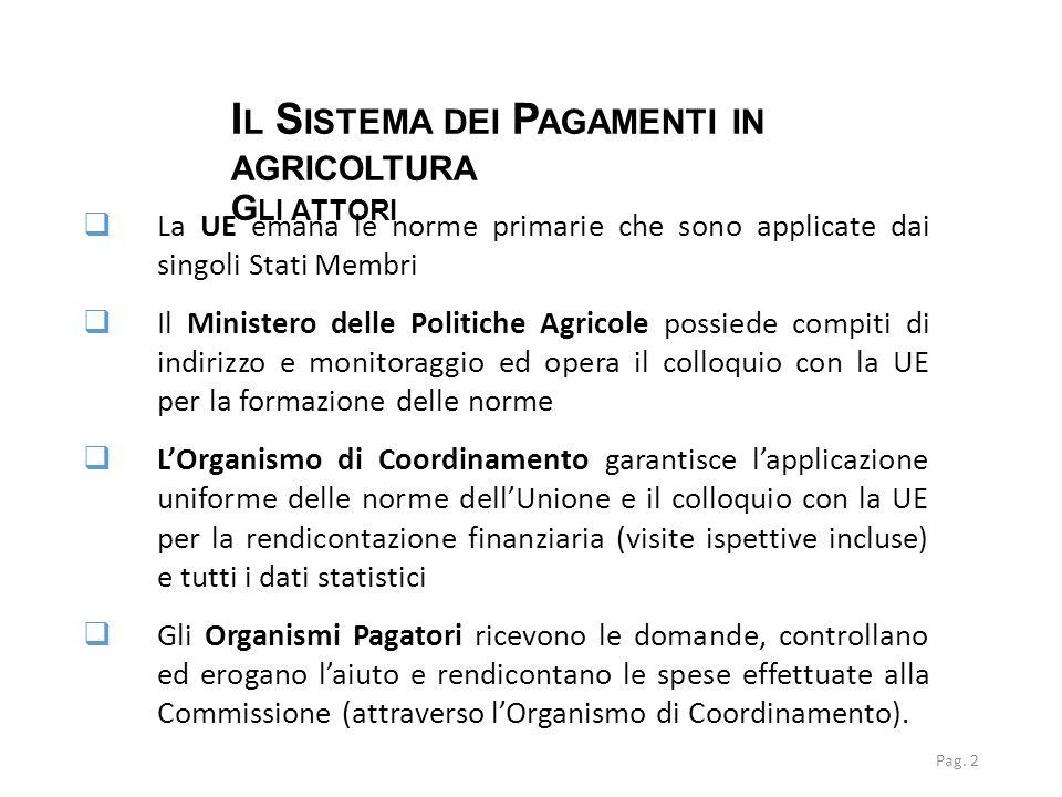 Il Sistema dei Pagamenti in agricoltura Gli attori