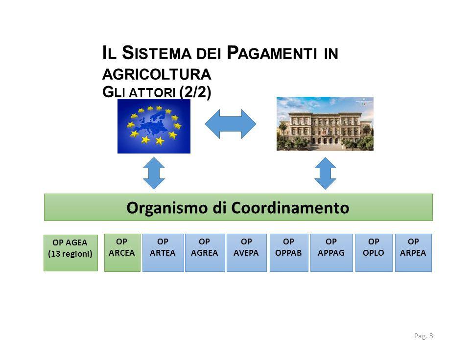 Il Sistema dei Pagamenti in agricoltura Gli attori (2/2)