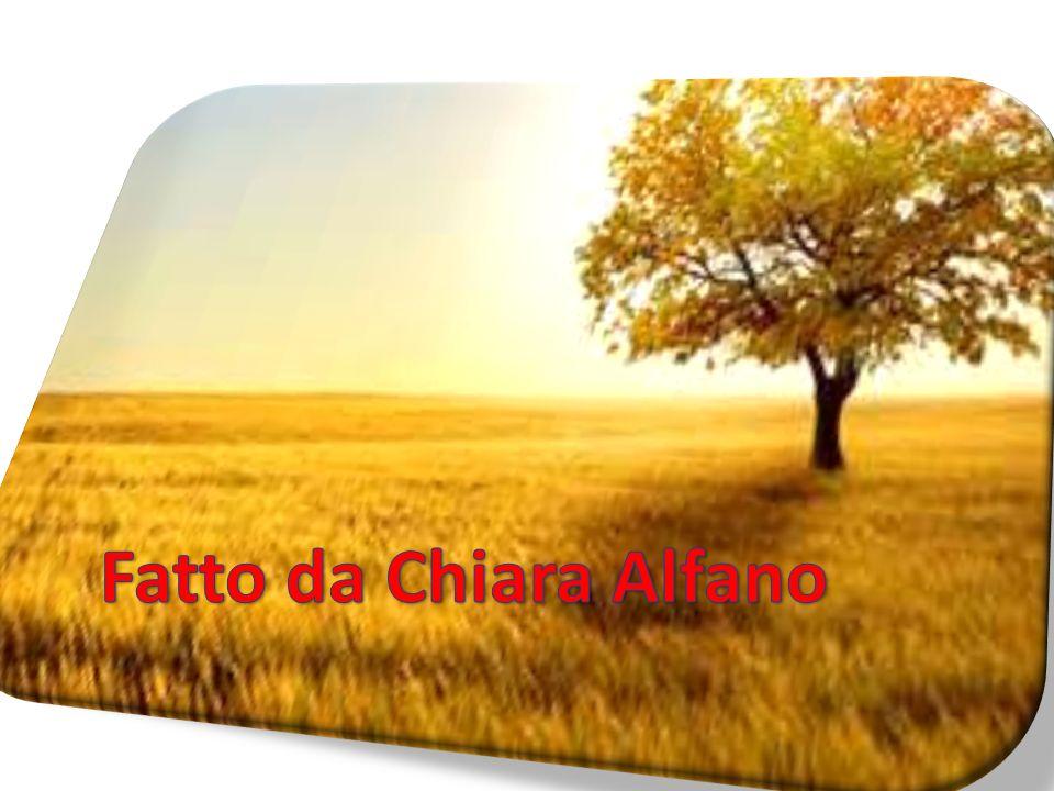 Fatto da Chiara Alfano