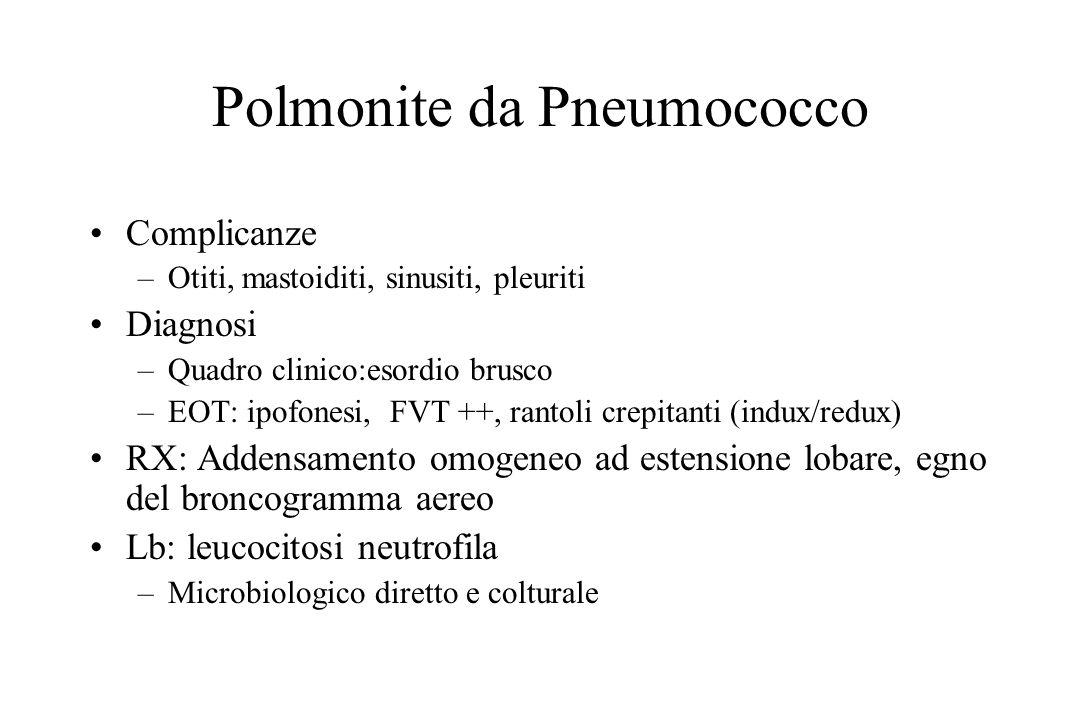 Polmonite da Stafilococco aureo