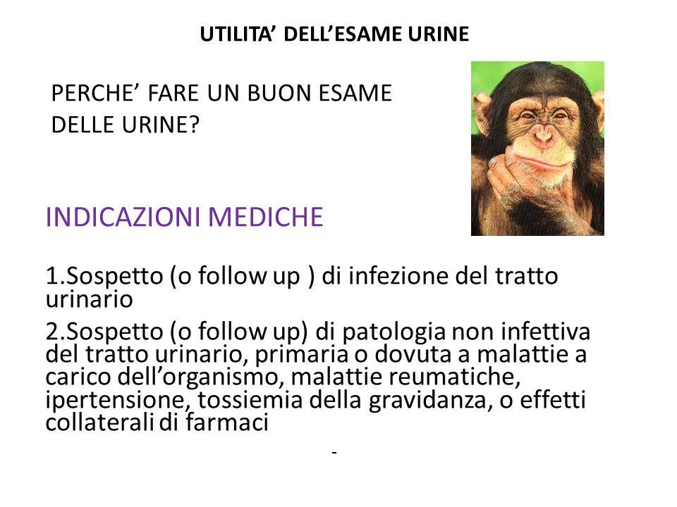UTILITA' DELL'ESAME URINE