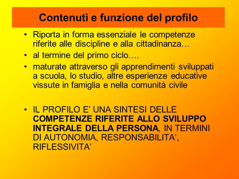 Contenuti e funzione del profilo