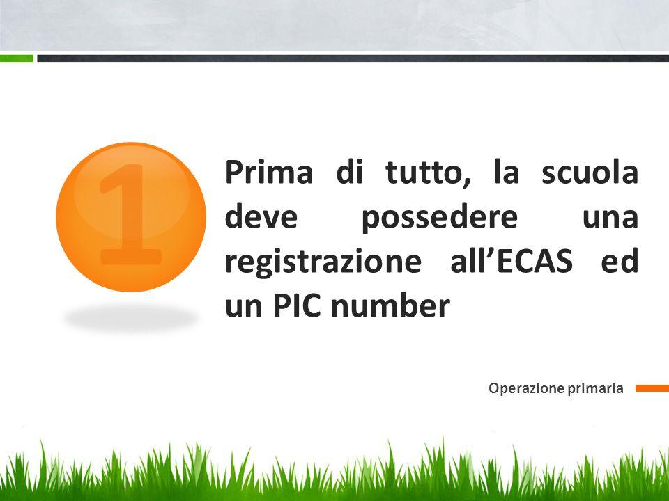 1 Prima di tutto, la scuola deve possedere una registrazione all'ECAS ed un PIC number.