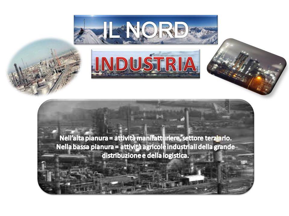 Nell'alta pianura = attività manifatturiere, settore terziario.