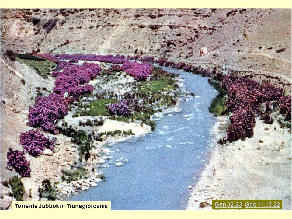 Torrente Jabbok in Transgiordania