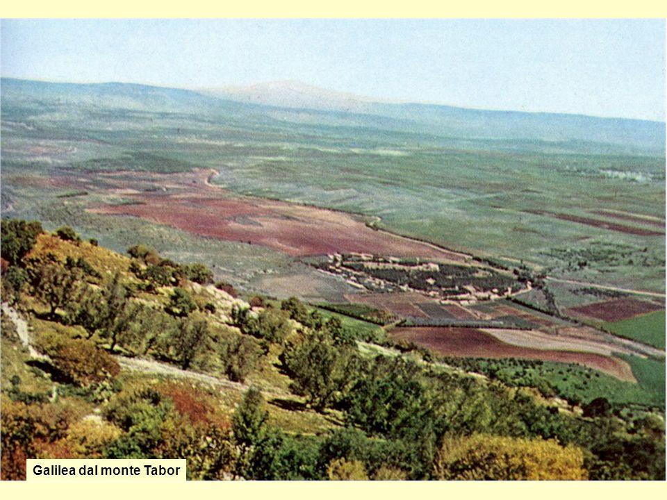 Galilea dal monte Tabor