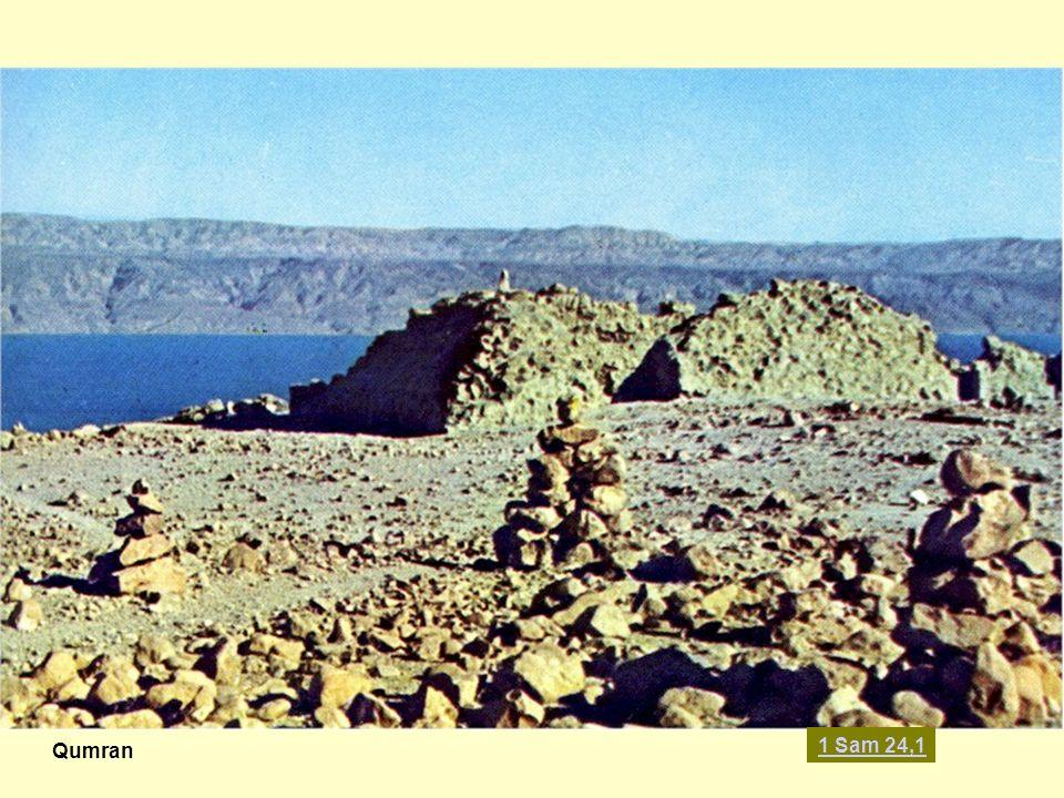 Qumran 1 Sam 24,1