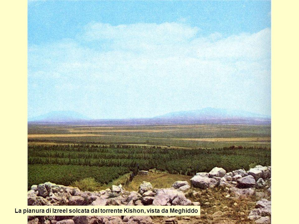La pianura di Izreel solcata dal torrente Kishon, vista da Meghiddo
