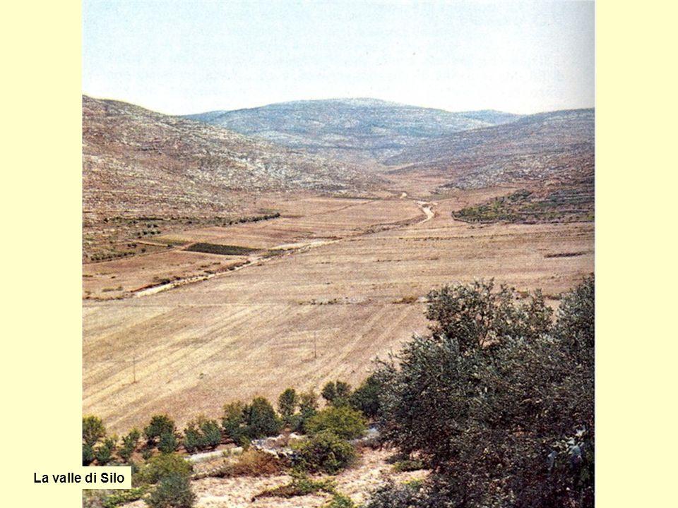 La valle di Silo