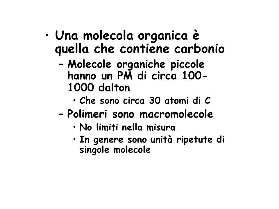Una molecola organica è quella che contiene carbonio