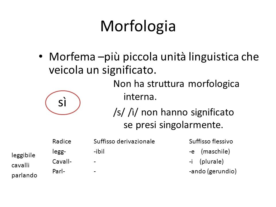 Morfologia Morfema –più piccola unità linguistica che veicola un significato. Non ha struttura morfologica interna.