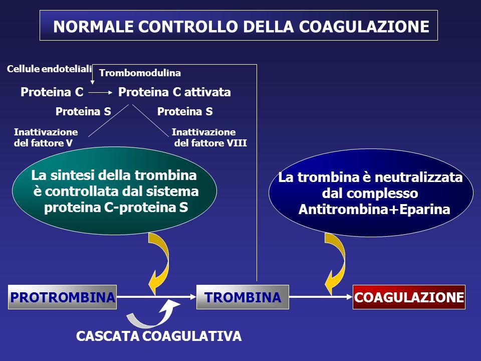 NORMALE CONTROLLO DELLA COAGULAZIONE