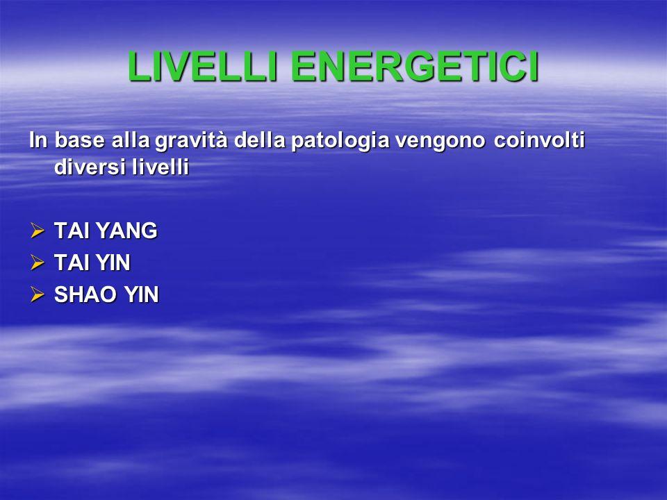 LIVELLI ENERGETICI In base alla gravità della patologia vengono coinvolti diversi livelli. TAI YANG.