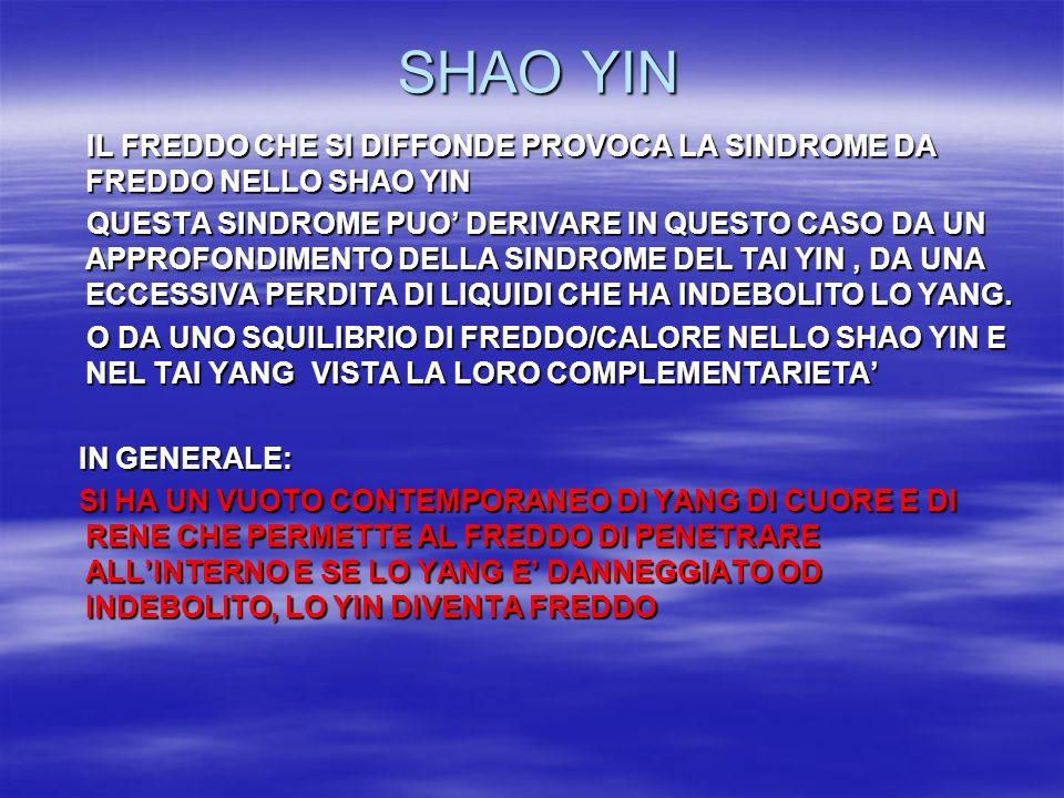 SHAO YIN IL FREDDO CHE SI DIFFONDE PROVOCA LA SINDROME DA FREDDO NELLO SHAO YIN.