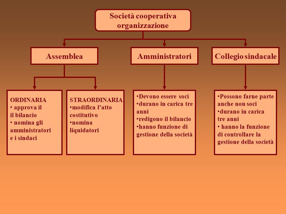 Società cooperativa organizzazione Assemblea Amministratori
