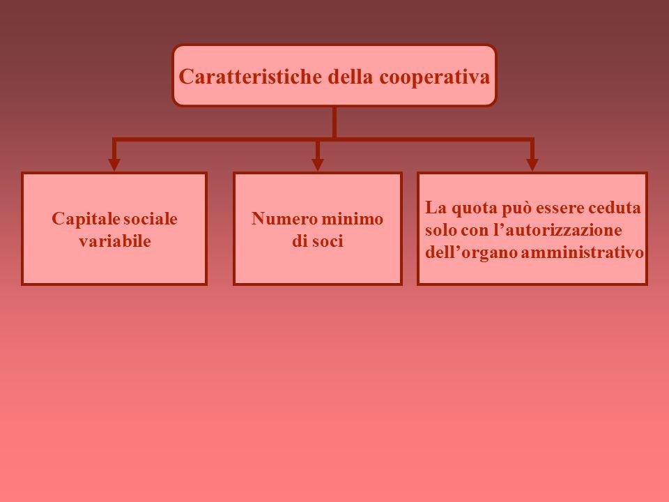 Caratteristiche della cooperativa