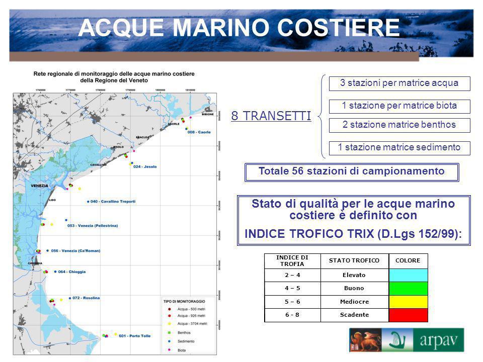 ACQUE MARINO COSTIERE 8 TRANSETTI
