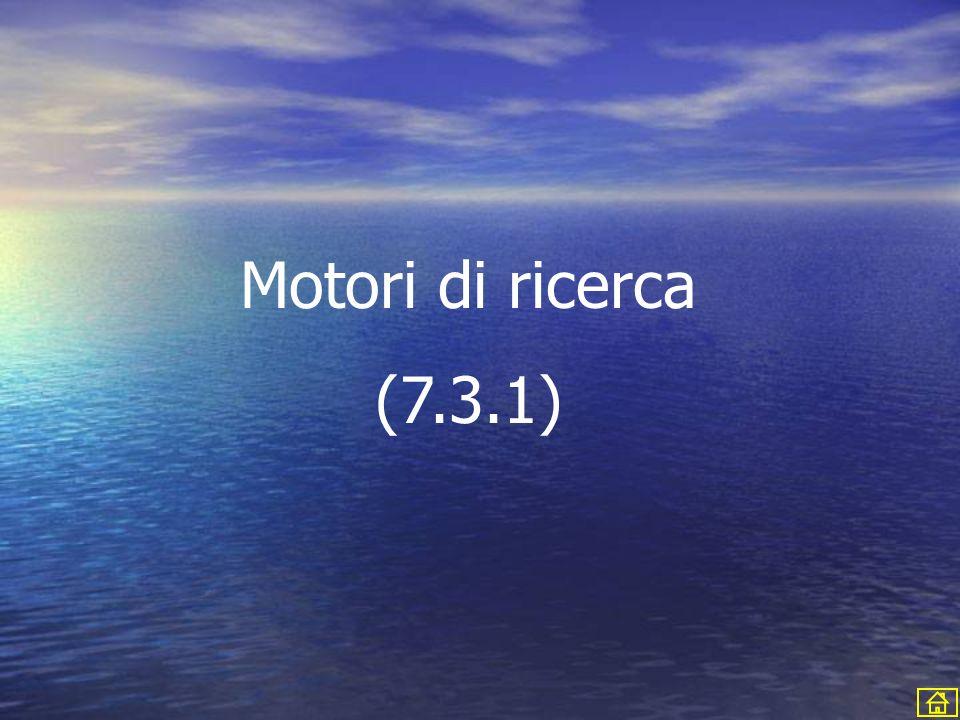 Motori di ricerca (7.3.1)