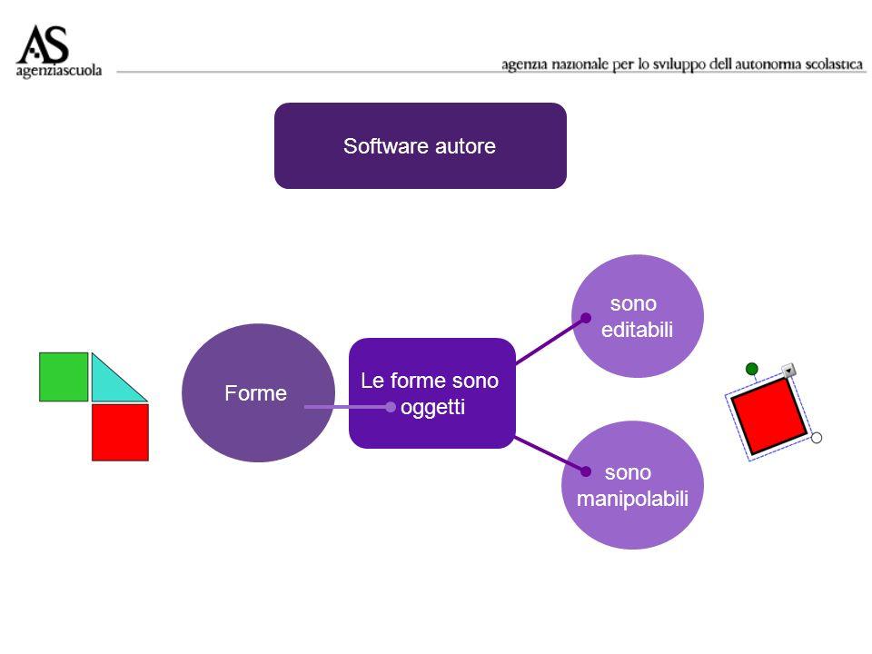 Software autore sono editabili Forme Le forme sono oggetti sono manipolabili