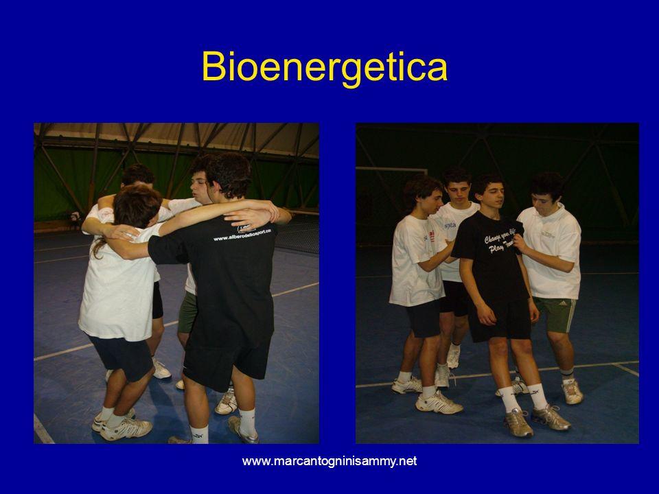 Bioenergetica www.marcantogninisammy.net