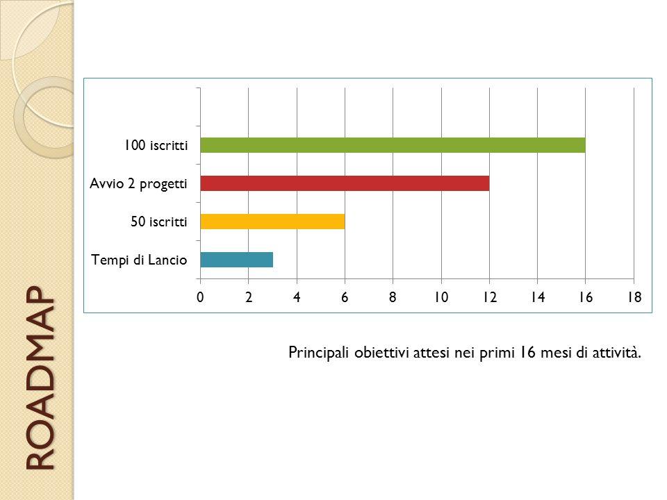 ROADMAP Principali obiettivi attesi nei primi 16 mesi di attività.