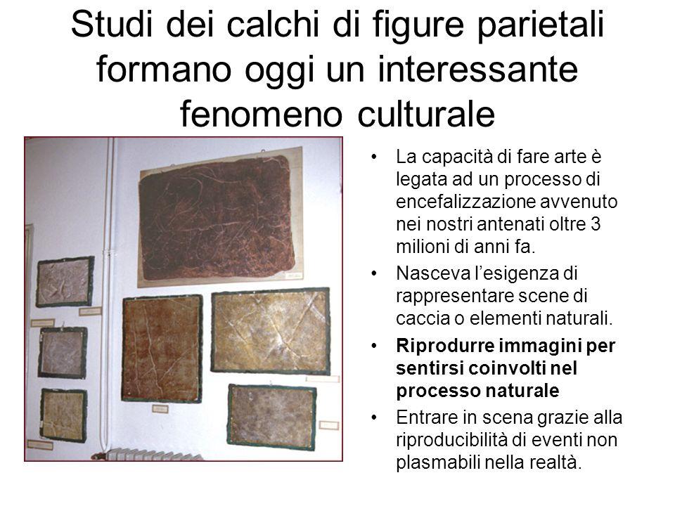 Studi dei calchi di figure parietali formano oggi un interessante fenomeno culturale