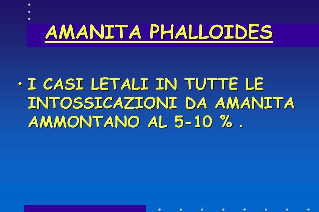 AMANITA PHALLOIDES I CASI LETALI IN TUTTE LE INTOSSICAZIONI DA AMANITA AMMONTANO AL 5-10 % .