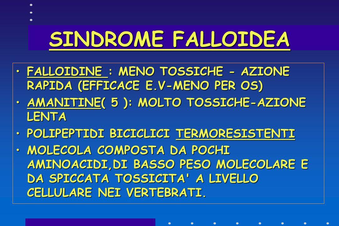 SINDROME FALLOIDEA FALLOIDINE : MENO TOSSICHE - AZIONE RAPIDA (EFFICACE E.V-MENO PER OS) AMANITINE( 5 ): MOLTO TOSSICHE-AZIONE LENTA.