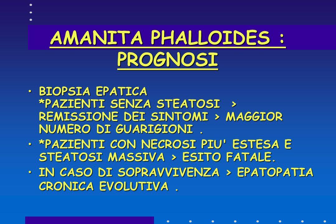AMANITA PHALLOIDES : PROGNOSI