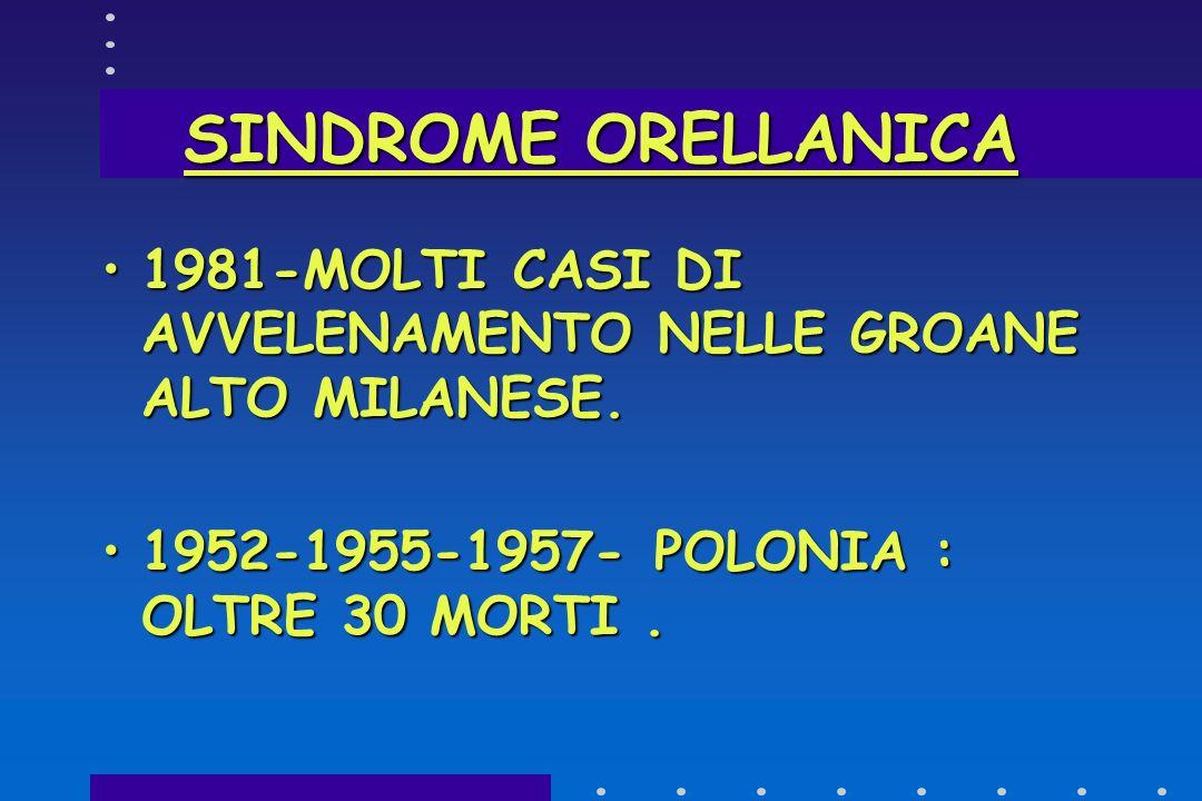 SINDROME ORELLANICA 1981-MOLTI CASI DI AVVELENAMENTO NELLE GROANE ALTO MILANESE.