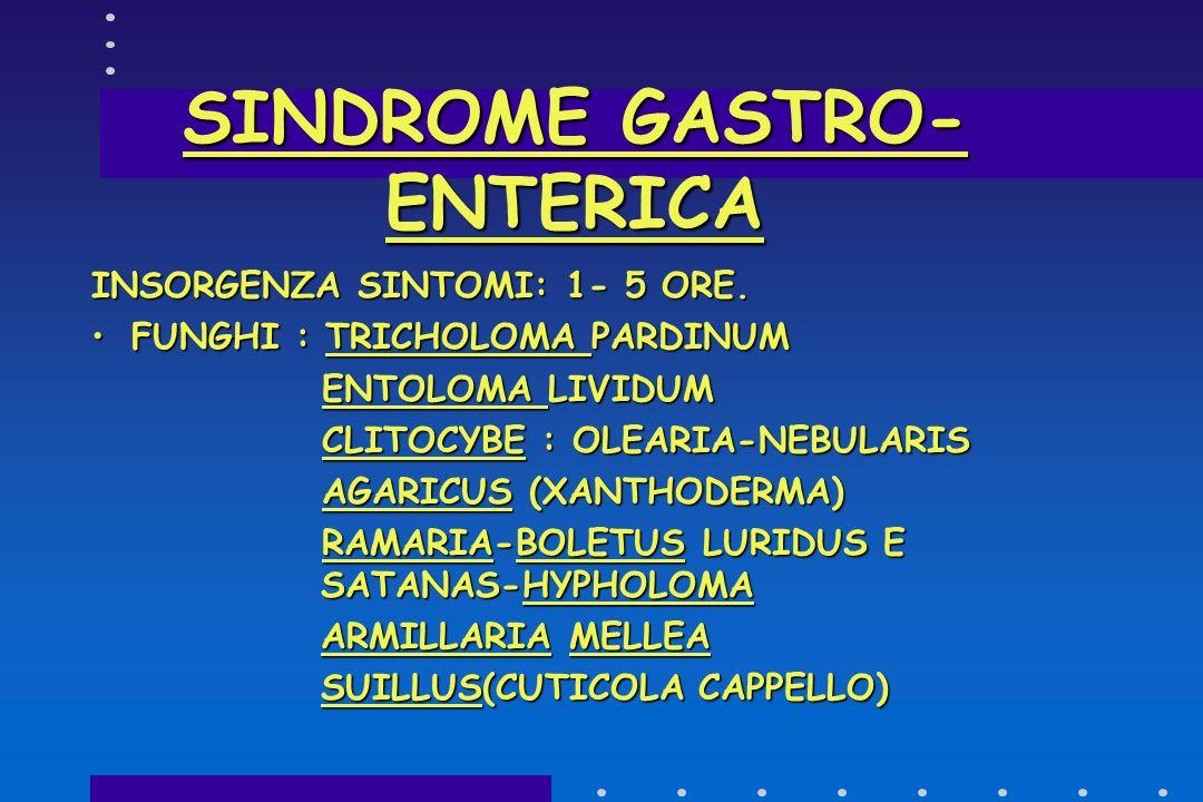 SINDROME GASTRO-ENTERICA