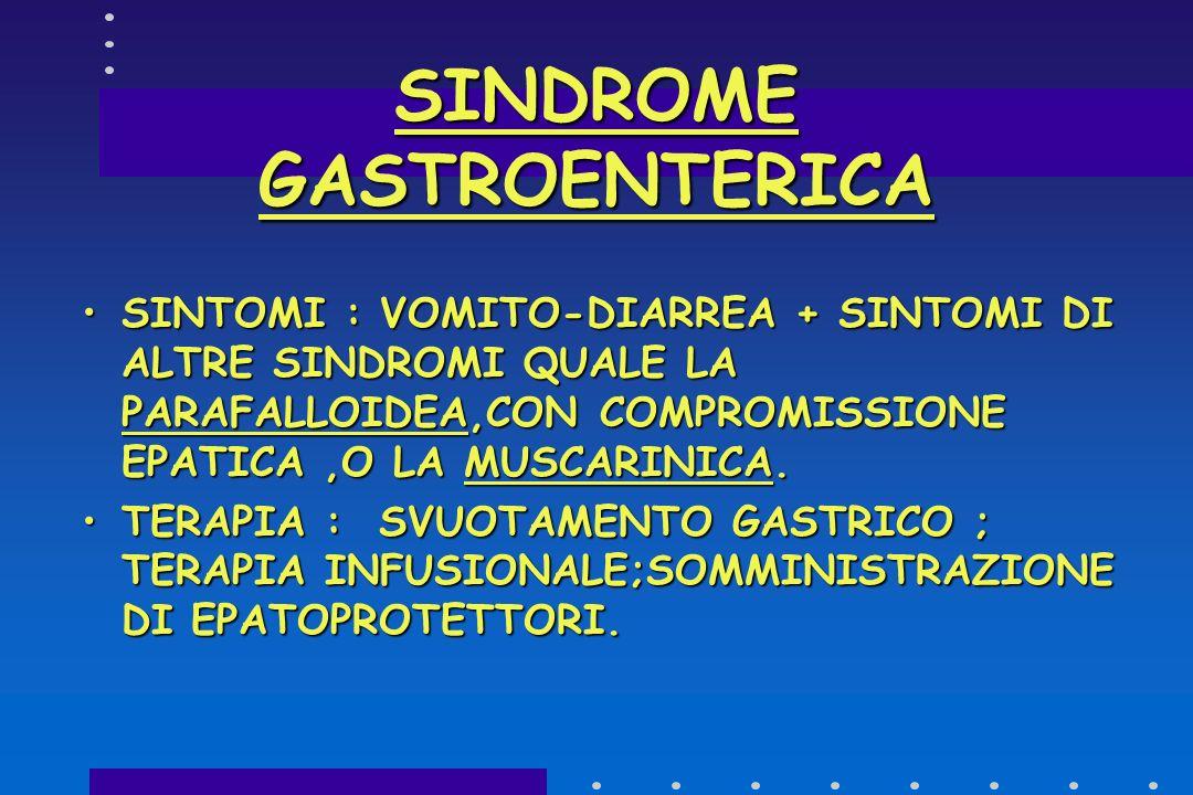 SINDROME GASTROENTERICA