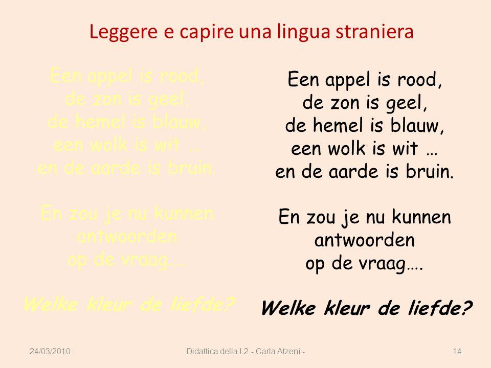 Leggere e capire una lingua straniera