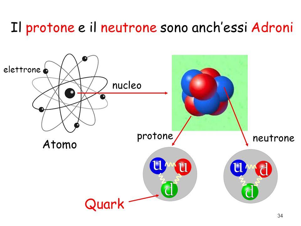 Il protone e il neutrone sono anch'essi Adroni