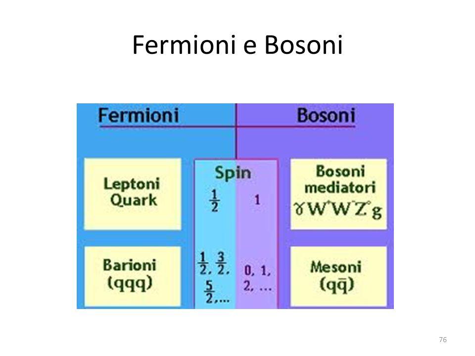 Fermioni e Bosoni