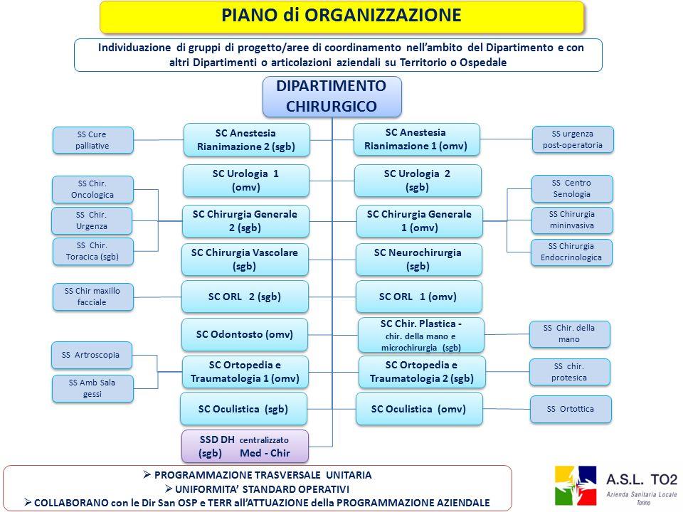 PIANO di ORGANIZZAZIONE