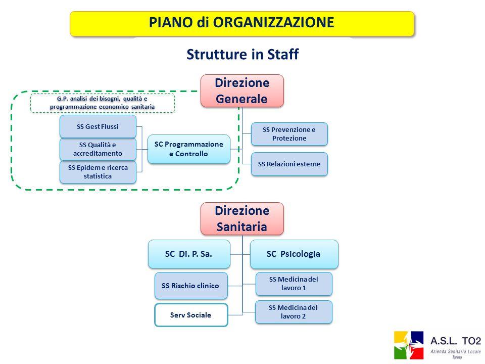 PIANO di ORGANIZZAZIONE Strutture in Staff