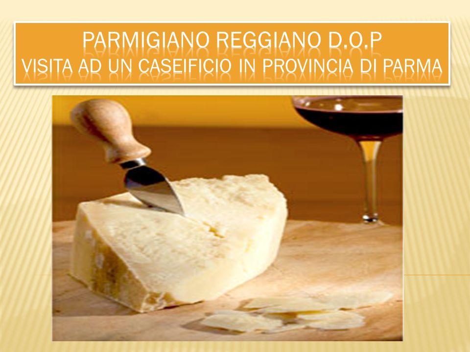 Parmigiano reggiano D. O