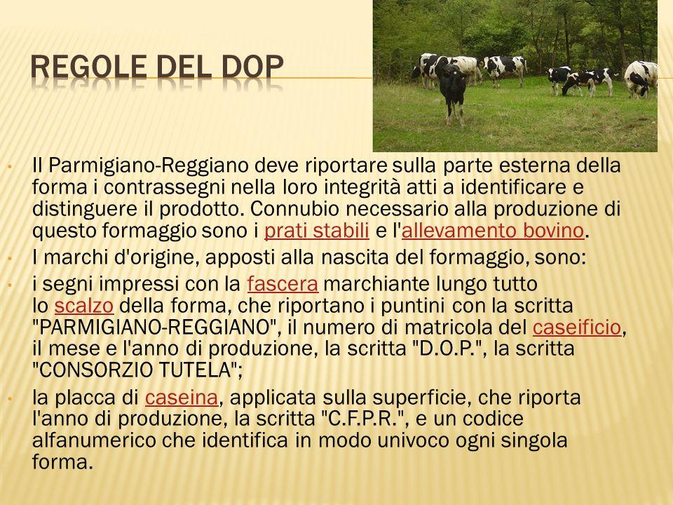 REGOLE DEL DOP